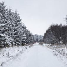 Vinterunderhåll